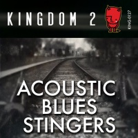 KING-127 Acoustic Blues Stingers cover