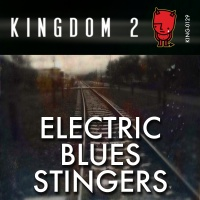 KING-129 Electric Blues Stingers cover