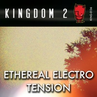 KING-136 Ethereal Electro Tension cover