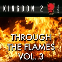 KING-106 Through the Flames Vol. 3 cover