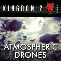 KING-137 Atmospheric Drones cover