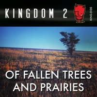 KING-100 Of Fallen Trees and Prairies cover