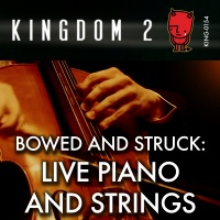 KING-154 Bowed and Struck Live Piano and Strings cover