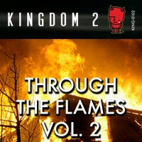 KING-102 Through the Flames Vol. 2 cover