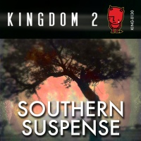 KING-130 Southern Suspense cover