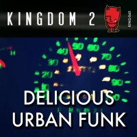 KING-045 Delicious Urban Funk cover