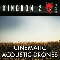 KING-163 Cinematic Acoustic Drones cover