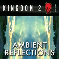 KING-184 Ambient Reflections cover